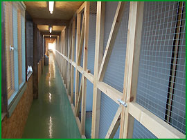 Waltham Abbey Cattery